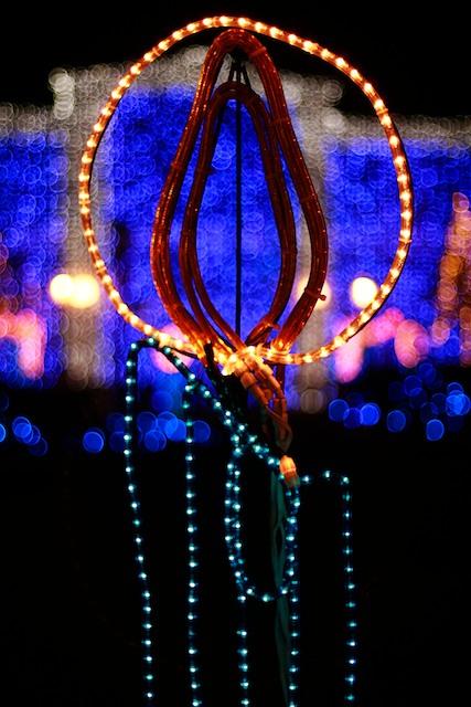 lights 11